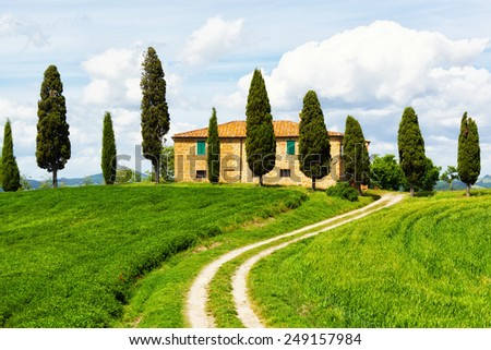 Rural house and cypress avenue, typical landscape of Tuscany, Italy - stock photo