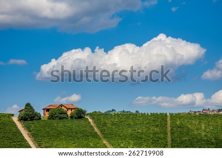 Rural house and green vineyards on downhill under blue sky with white clouds in Piedmont, Northern Italy. - stock photo