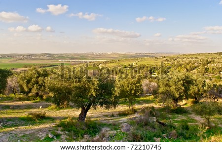 Rural israel landscape at the spring day . - stock photo