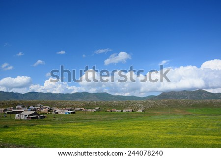 Rural landscape  - stock photo