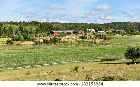 Rural landscape. Agribusiness - stock photo
