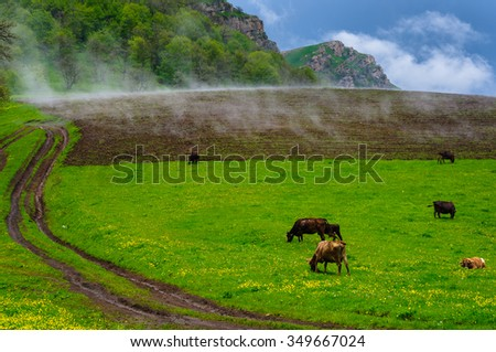 Rural landscape, Armenia - stock photo