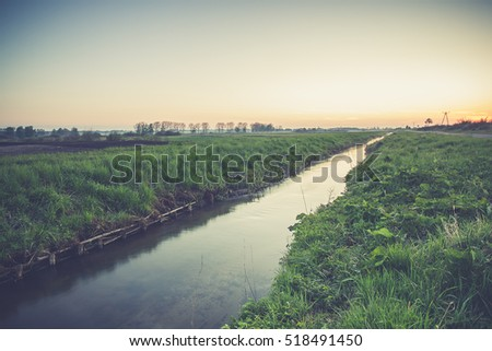 rural landscape. field and grass