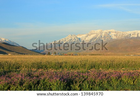 Rural landscape in Heber Valley, Utah, with Mt. Timpanogos in the background. - stock photo