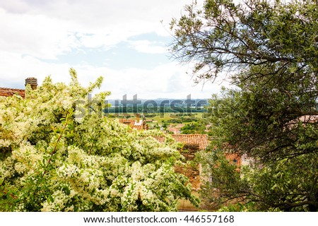 Rural landscape in Provence. Garden wall overgrown with blooming bush. Red tiled roofs and a view on the valley at backgrounds. (Chateauneuf du Pape, France)