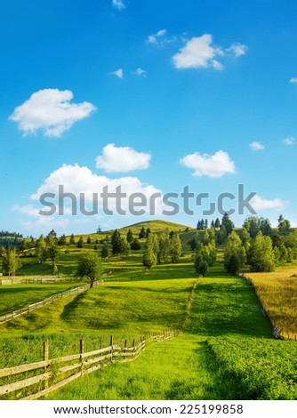 Rural landscape in summer with scattered trees and wooden fence. Ghimes, Transylvania, Romania - stock photo