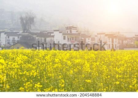 Rural landscape in wuyuan county, jiangxi province, china.  - stock photo