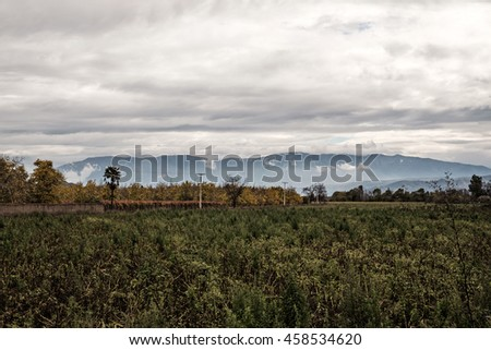 Rural landscape near Los Andes, Chile