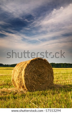 Rural landscape of haystacks.