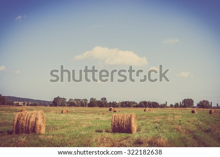 Rural landscape showing hay bales on meadow in summer at harvest. Farmland and agriculture in Poland, vintage photo. - stock photo