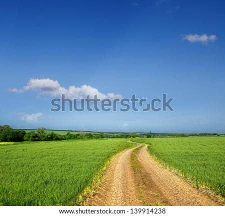 Rural landscape with dirt road between green fields - stock photo