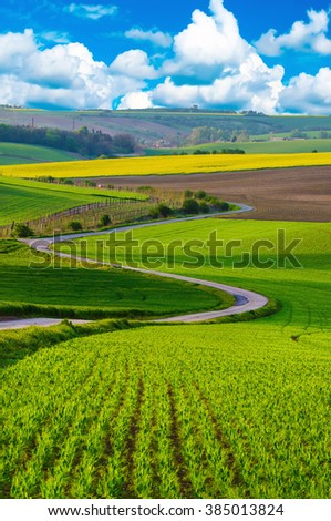 Rural landscape with green fields, road and waves, South Moravia, Czech Republic - stock photo