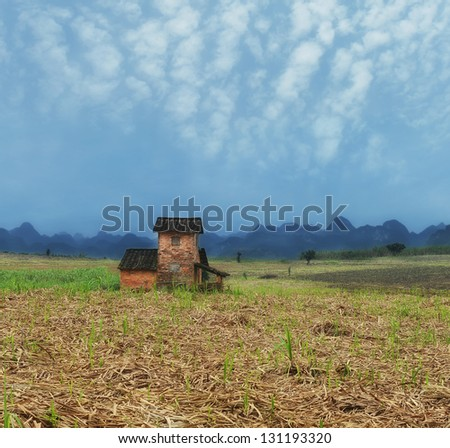 Rural landscape with house in a Field of Sugarcane