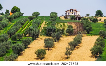 rural landscape with houses standing alone in the province of Tuscany in Italy