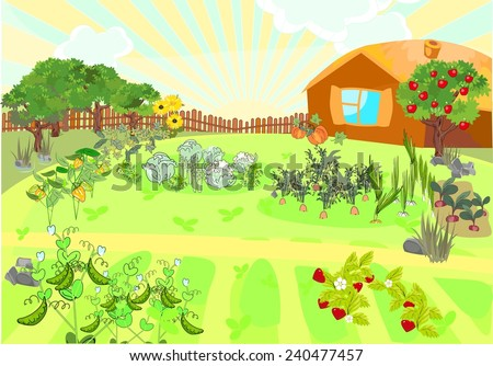 Rural landscape with kitchen-garden