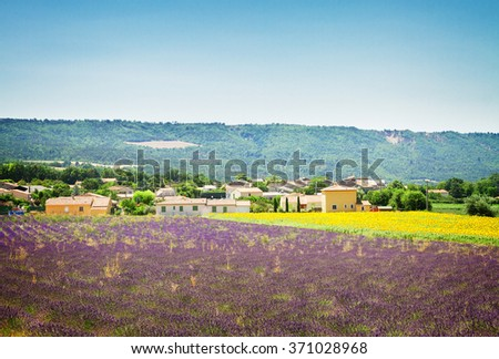 Rural landscape with  lavender and sunflowers  field, Provence, France, , retro toned - stock photo