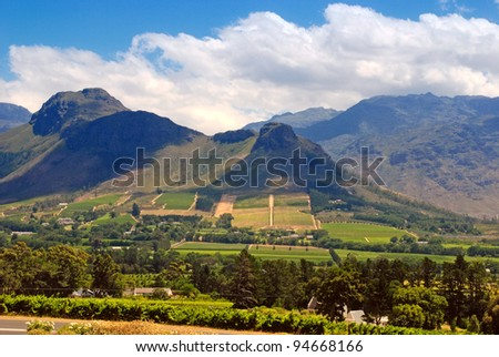 Rural landscape with mountains, fields and vineyard, Capetown province (South Africa) - stock photo