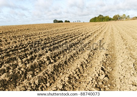 Rural landscape with plowed field.