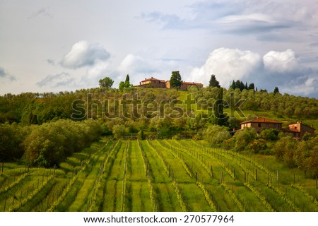 Rural landscape with vineyards in Tuscany, Italy - stock photo