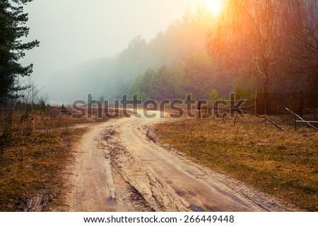 Rural morning foggy landscape - stock photo