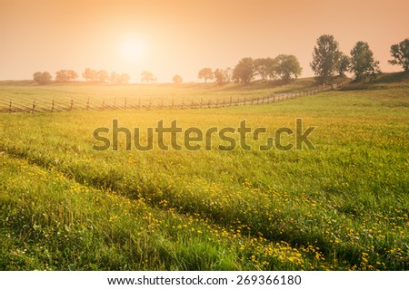 Rural nature at sunset. Beautiful summer landscape with field. Creative vintage filter, retro effect - stock photo