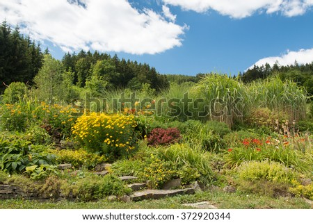 rural organic countryside garden in the summer with colorful flowers as hellebores, daylily, berberis and coreopsis - stock photo
