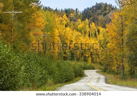 rural road in fall Valdez - Alaska