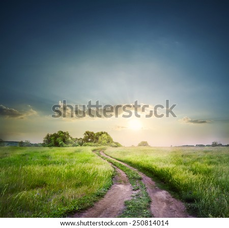 Rural road in field with green grass under the morning sky