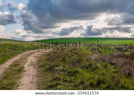 Rural road in the meadow in stormy weather - stock photo