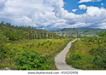 rural road in the mountains, New Guinea - stock photo