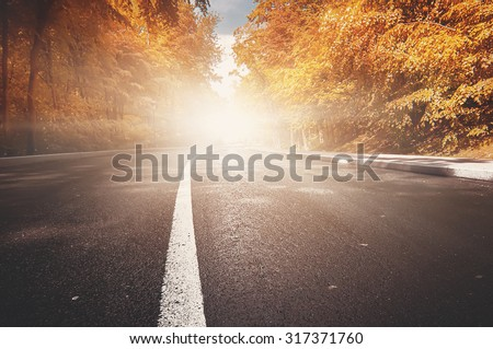 rural road. natural autumn background - stock photo
