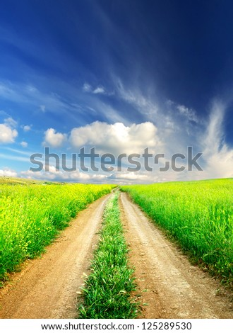 Rural road on green field. Summer landscape - stock photo