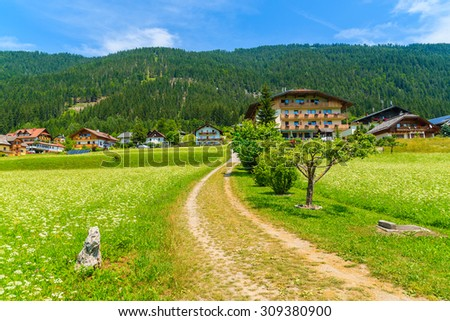 Rural road on green meadow with flowers with traditional countryside houses in background, Weissensee lake, Alps Mountains, Austria - stock photo