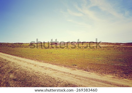 Rural road on the field background, toned - stock photo