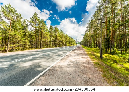 Rural road passing through the coniferous forest - stock photo