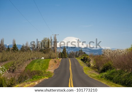 Rural road through Hood River Valley, Mt. Adams in background - stock photo