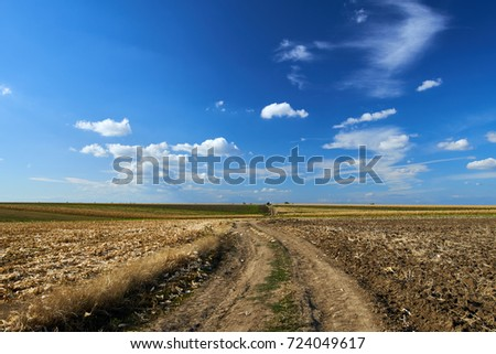 Rural road through ploughed fields and corn under blue sky with clouds