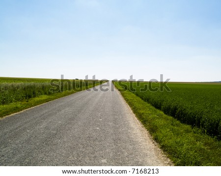 Rural route, green field and blue clean sky.