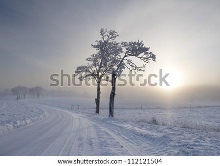 Rural scene in winter - stock photo