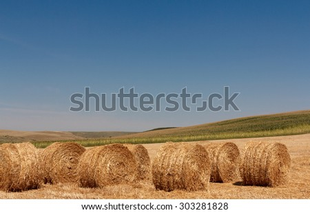 Rural scenic landscape during the summer season with haye bales - stock photo