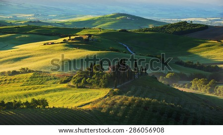 Rural summer landscape of Tuscany, Italy