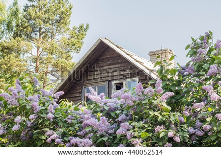 Rural wooden house in the garden at summer - stock photo