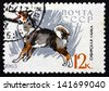 RUSSIA - CIRCA 1965: a stamp printed in the Russia shows Siberian Husky, Breed of Dog, circa 1965 - stock photo
