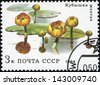 RUSSIA - CIRCA 1984: post stamp printed in USSR (CCCP, soviet union) shows image of water lilies from aquatic plants series, Scott catalog 5253 A2509 3k, circa 1984 - stock photo