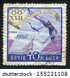 RUSSIA - CIRCA 1960: stamp printed by Russia, shows Diving, circa 1960 - stock