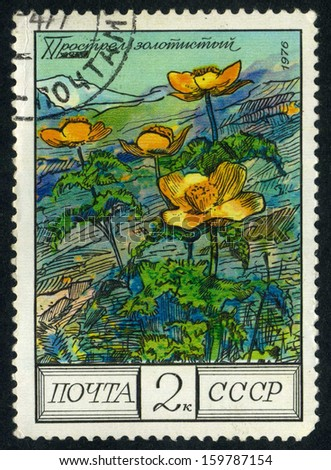 RUSSIA  - circa 1976: stamp printed by Russia, shows flower circa 1976