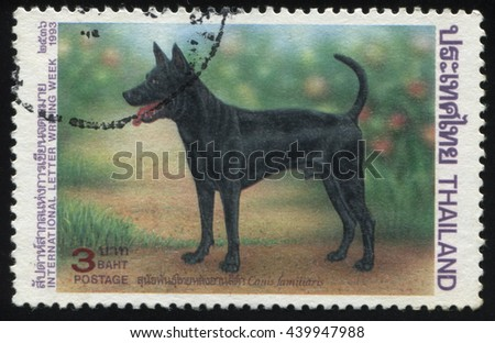 RUSSIA KALININGRAD, 2 JUNE 2016: stamp printed by Thailand shows dog, circa 1993