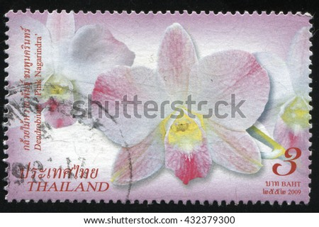 RUSSIA KALININGRAD, 2 JUNE 2016: stamp printed by Thailand shows flower, circa 2009