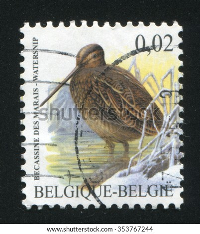 RUSSIA KALININGRAD, 20 OCTOBER 2015: stamp printed by Belgium, shows bird and branch, circa 1992