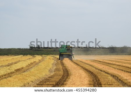 Russia, Poltavskaya village - September 6, 2015: Combine harvesters Don. Agricultural machinery.